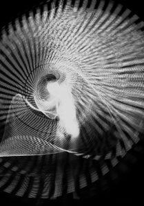 txema-yeste-Dream-Light-Still-Life-6